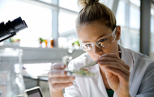 person working in a lab