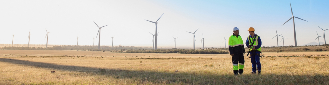 Workers at a windfarm