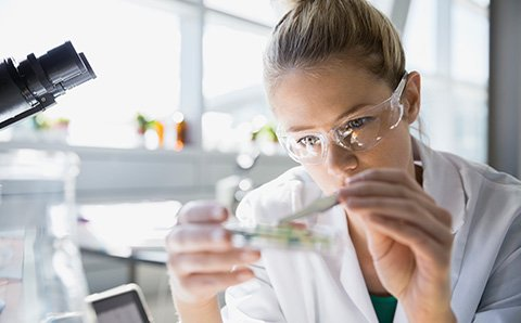 Women working in a lab